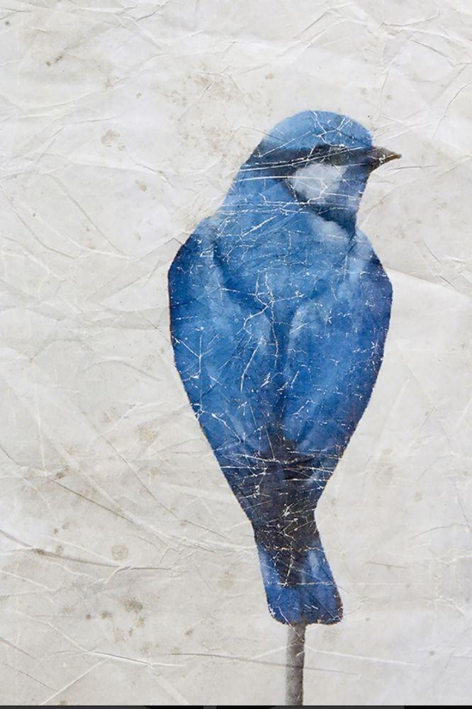 Kunsttapete mit Vogelmotiv, Querformat 150x200