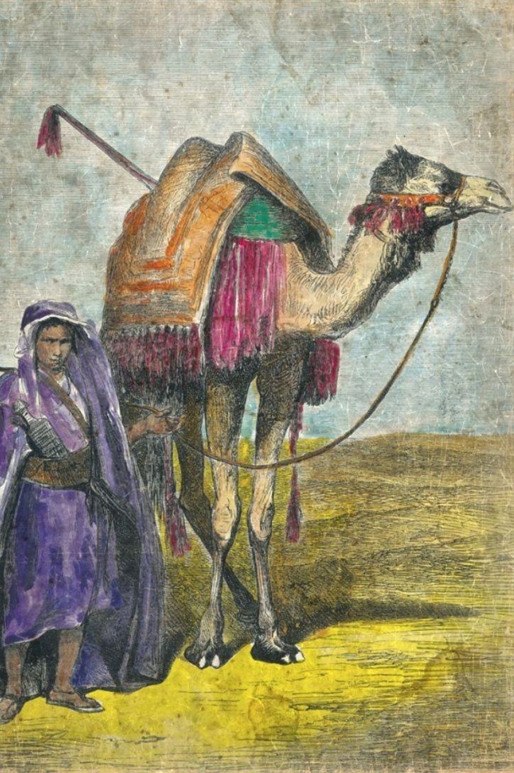 Wandbild 'Tuareg  mit Kamel', 120x90