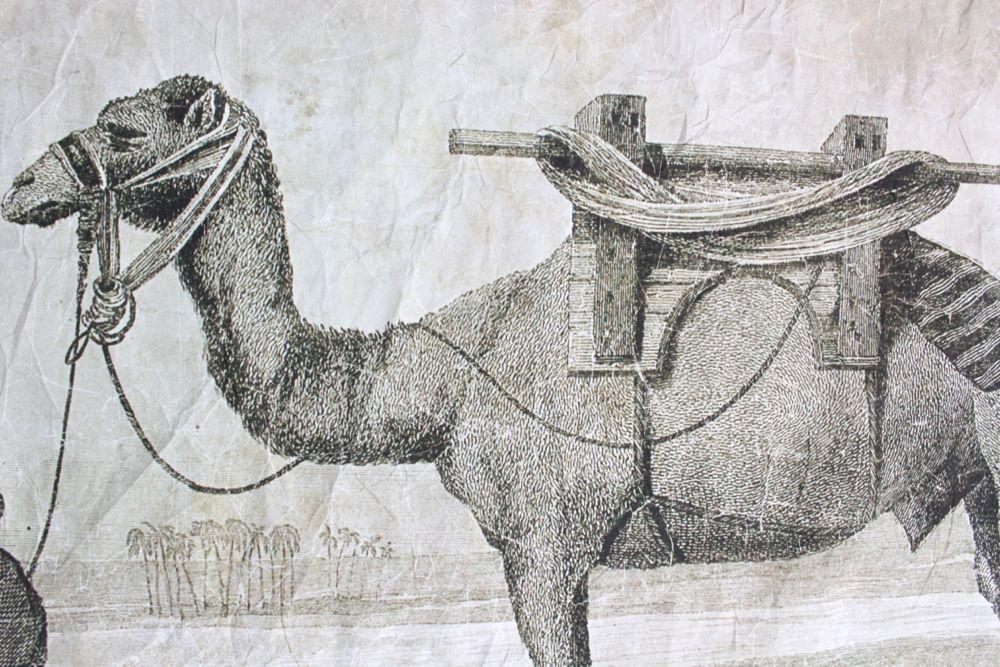 Kunstdruck auf Knitterpapier Beduine, Querformat 90x120